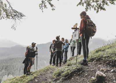 Wanderung Eingang zum Urwald